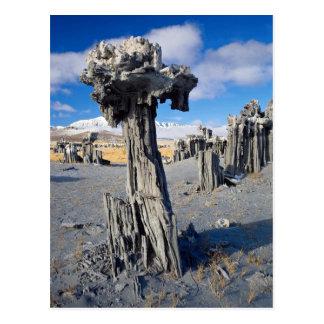 Sand tufa formations, Mono Lake, California, U.S.A Post Cards