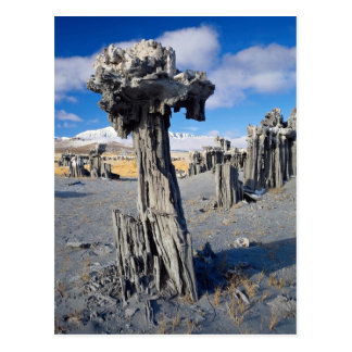 Sand tufa formations, Mono Lake, California, U.S.A Postcard