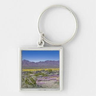 Sand Verbena & Desert Gold at Amboy Crater, CA, Key Chain