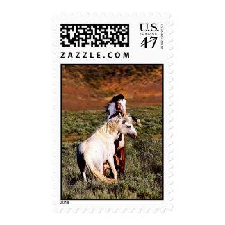 Sand Wash Basin Fighting Stallions Stamp