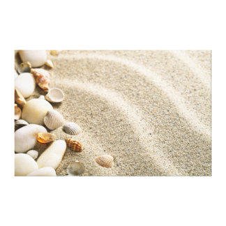 Sand With Shells And Stones. Beach Composition Canvas Print
