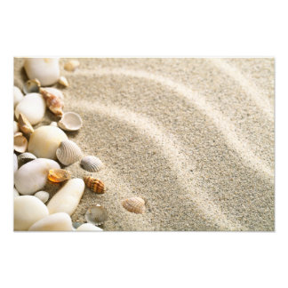Sand With Shells And Stones. Beach Composition Photo Print