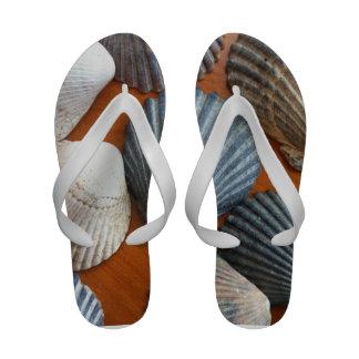 Sandalias del flip-flop de Shell del mar de la con
