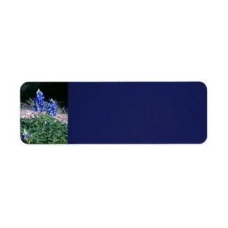 Sandbar Bluebonnets Label