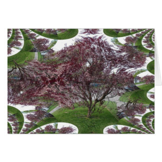 Sandcherry Fractal Traced Tree Card