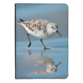 Sanderling Calidris Albe Feeding On Wet Beach Kindle Touch Cover