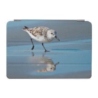 Sanderling Calidris Albe Feeding On Wet Beach iPad Mini Cover