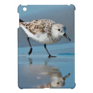 Sanderling Calidris Albe Feeding On Wet Beach Cover For The iPad Mini