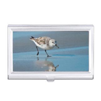 Sanderling Calidris Albe Feeding On Wet Beach Business Card Cases