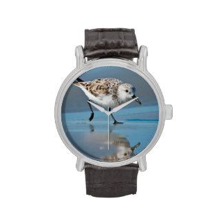 Sanderling Calidris Albe Feeding On Wet Beach Wristwatches