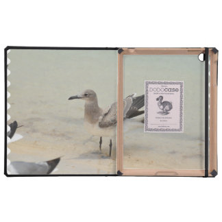 Sanderling iPad Cover