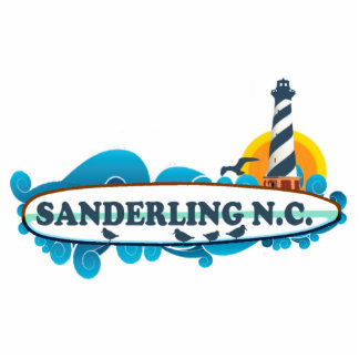 Sanderling. Cutout