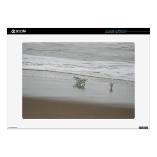 "Sanderlings at Horsfall Beach Oregon Decal For 15"" Laptop"