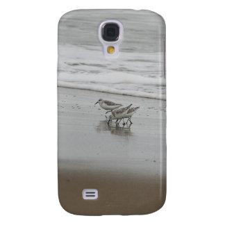 Sanderlings en la playa de Horsfall Oregon