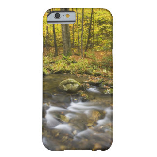 Sanderson Brook.  Chester-Blanford State Forest. Barely There iPhone 6 Case