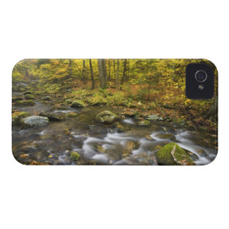 Sanderson Brook.  Chester-Blanford State Forest. Case-Mate iPhone 4 Case