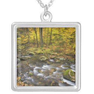 Sanderson Brook.  Chester-Blanford State Forest. Silver Plated Necklace