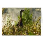 Sandhill Crane at Moose Ponds in Grand Teton Card