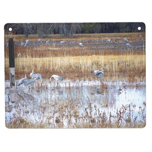 Sandhill Crane Birds Animals Wildlife Photography Dry Erase Board With Keychain Holder