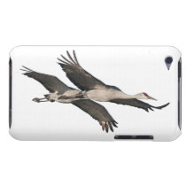 Sandhill Crane Birds Wildlife Animals Barely There iPod Cover