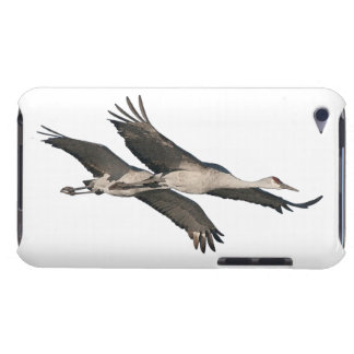 Sandhill Crane Birds Wildlife Animals Barely There iPod Cover