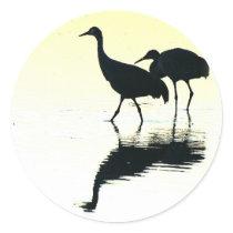 Sandhill Crane Birds Wildlife Animals Classic Round Sticker