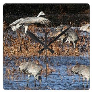 Sandhill Crane Birds Wildlife Animals Clock