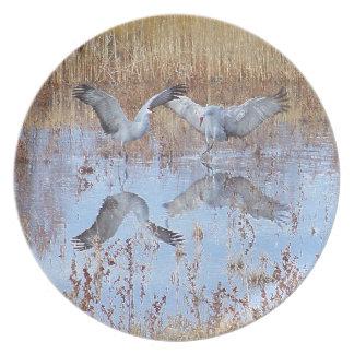 Sandhill Crane Birds Wildlife Animals Dinner Plate