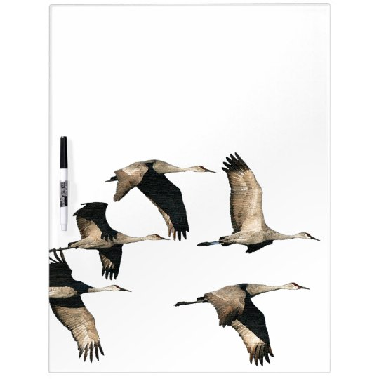 Sandhill Crane Birds Wildlife Animals Dry Erase Board