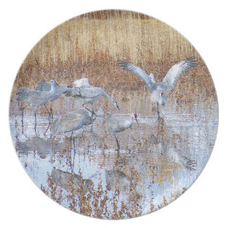 Sandhill Crane Birds Wildlife Animals Melamine Plate