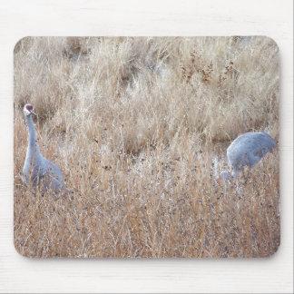 Sandhill Crane Birds Wildlife Animals Mouse Pad