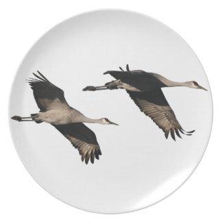Sandhill Crane Birds Wildlife Animals Plate