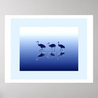 Sandhill Crane Birds Wildlife Animals Poster