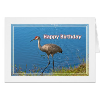 Sandhill Crane Birthday Card