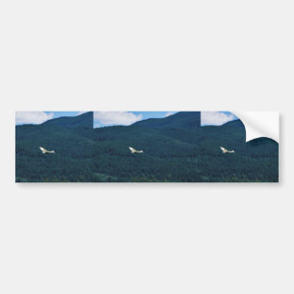 Sandhill Crane Bumper Sticker