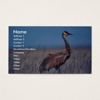 Sandhill Crane Business Card