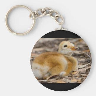 Sandhill Crane Chick Keychain