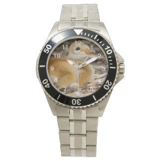 Sandhill Crane Chick Wristwatch