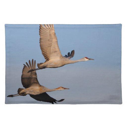 sandhill crane couple in flight place mat