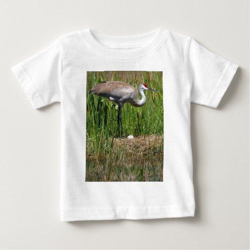 Sandhill Crane & Egg Baby T-Shirt