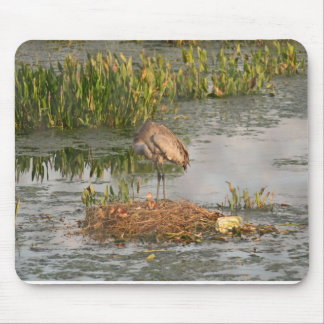 Sandhill Crane Family Mouse Pad