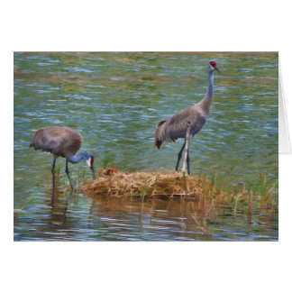 Sandhill Crane Family Note Card