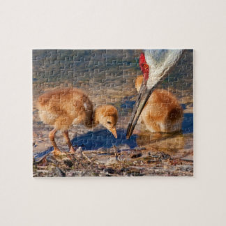 Sandhill Crane Family with Worm Puzzle