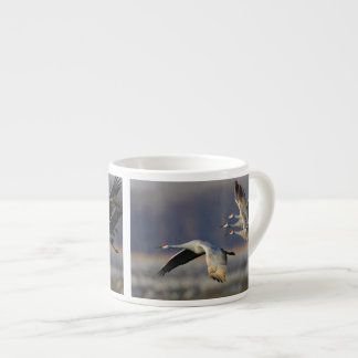 sandhill crane flock in flight espresso cup