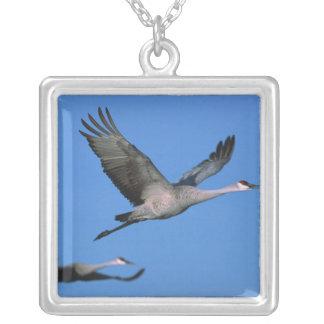 Sandhill Crane Grus canadensis) in flight. Square Pendant Necklace