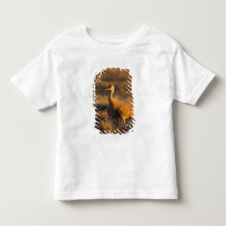 sandhill crane, Grus canadensis, in the 1002 2 Toddler T-shirt