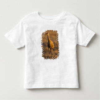 sandhill crane, Grus canadensis, in the 1002 Toddler T-shirt