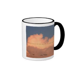 Sandhill Crane Grus canadensis) in twilight Mugs