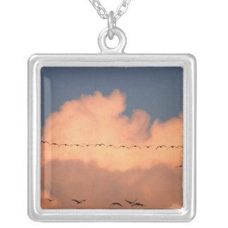 Sandhill Crane Grus canadensis) in twilight Square Pendant Necklace