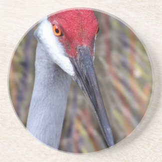 Sandhill Crane Head PIcture with colours around Drink Coaster